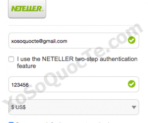 How To Use Neteller E-wallet To Buy Powerball Tickets Online ?