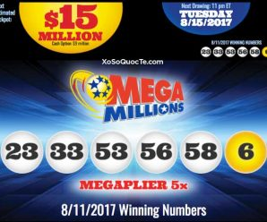 Mega Millions lottery worth $ 393 million has been owned