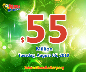 One Arizona man won $1 million; Mega Millions jackpot rises to $55 million